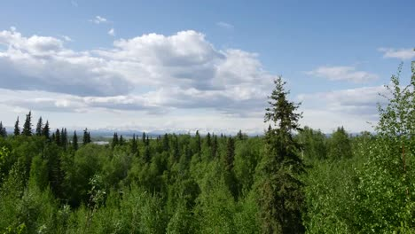 Alaska-Boreal-Forest-And-Clouds