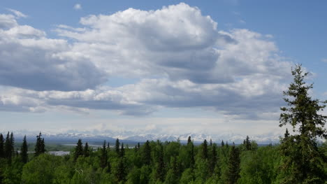 Alaska-Clouds-And-Northern-Forest-Pan