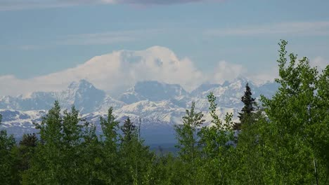Alaska-Distant-Mountain-Above-Forest