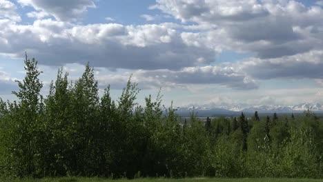 Alaska-Pans-To-Mt-Denali