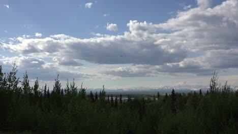 Alaska-Small-Plane-Flies-Over-Forest