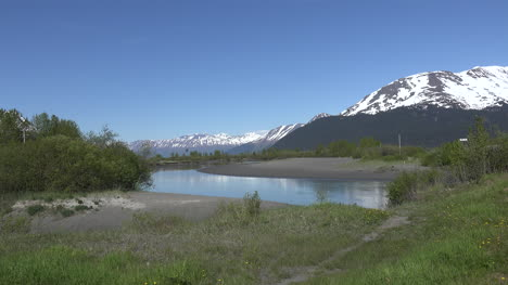 Alaska-Stream-With-Insects-Zoom-In