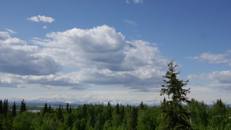 Alaska-Zoom-On-Cloud-And-Forest