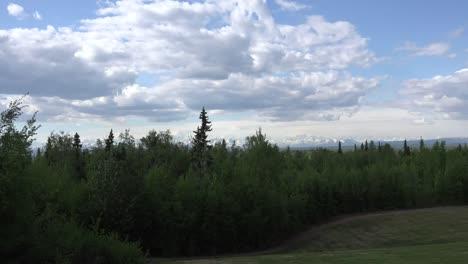 Alaska-Zoom-To-Mt-Denali-Past-Trees