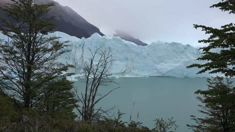 Argentina-Zooms-On-Glacier-Beyond-Trees