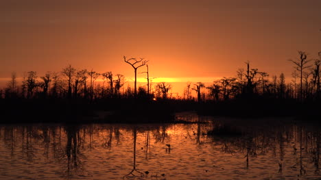 Georgia-Okefenokee-Fantastic-Orange-Sunset-Sky