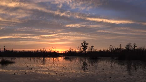 Georgia-Okefenokee-Glorious-After-Sunset-Sky