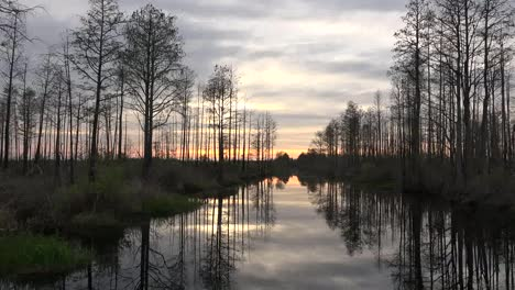 Georgia-Okefenokee-Late-Evening-Moving-Through-Swamp