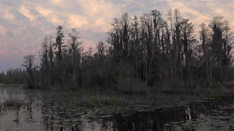 Georgia-Okefenokee-Little-Pink-Clouds-Over-Swamp-Pan