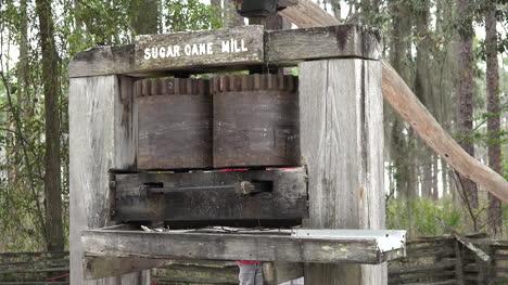 Georgia-Okefenokee-Looking-At-Sugar-Mill