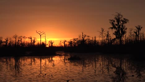 Georgia-Okefenokee-Orange-And-Yellow-Sky