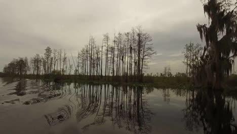 Georgia-Okefenokee-Reflections-In-Water