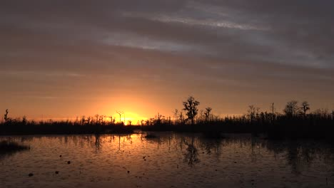 Georgia-Okefenokee-Setting-Sun-Over-Swamp
