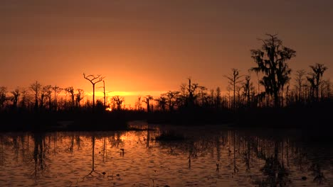 Georgia-Okefenokee-Setting-Sun-With-Orange-Sky
