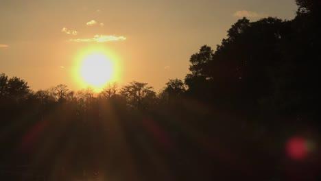 Georgia-Okefenokee-Sunset-With-Sun-Rays-Zoom-In