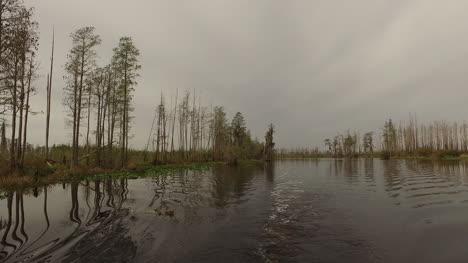 Georgia-Okefenokee-Wake-From-Boat-In-Swamp