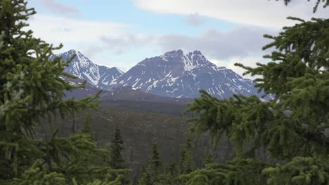 Alaska-Mountain-And-Trees-Zoom-Out
