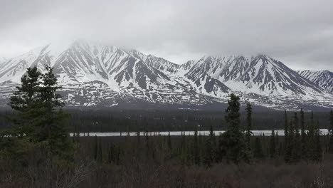 Alaska-Snowy-Mountains-And-Spruce-Trees-Pan