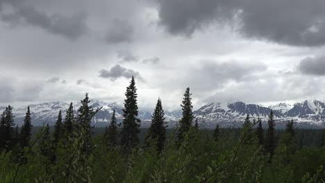 Alaska-Trees-And-Dark-Clouds-Pan