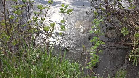 Alaska-Water-Rippling-On-Rock