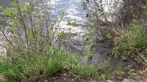 Alaska-Zoomt-Auf-Wasser-Auf-Felsen