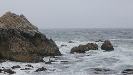 California-17-Mile-Drive-China-Rock-Cormorants-And-Pelican