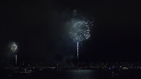 California-Fireworks-San-Diego-Tour-Boat-Appears