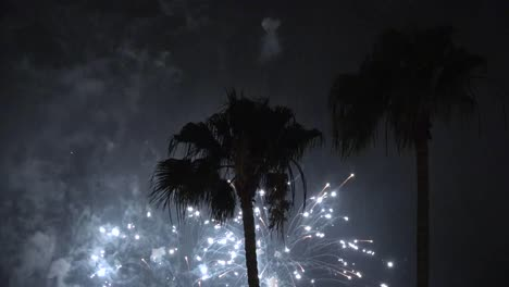 California-Fireworks-San-Diego-With-Two-Palm-Trees
