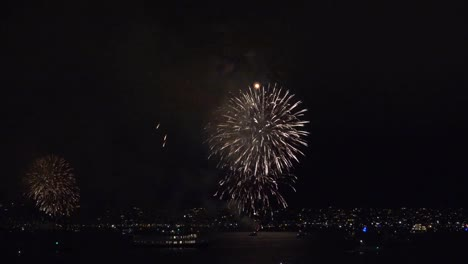 California-San-Diego-Fireworks-And-Tour-Boat-Sailing
