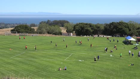 California-Santa-Cruz-Disc-Tourney-People-On-Field