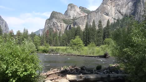 California-Yosemite-River-With-Driftwood-And-Falls-Beyond