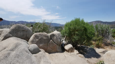California-Pans-Rocks-To-Family
