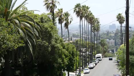 California-Los-Angeles-Car-Drives-Down-Street-Lined-With-Palm-Trees