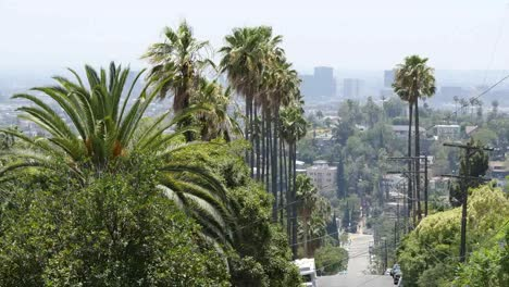 California-Los-Angeles-Trees-And-View-Down-Street