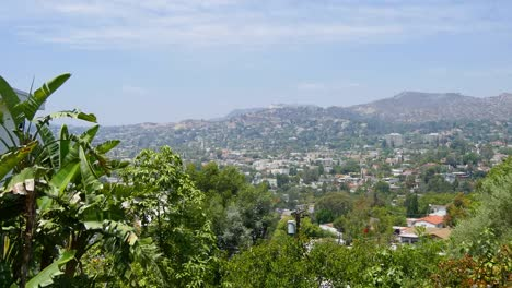 California-Los-Angeles-View-Of-Residential-Neighborhood-And-Trees