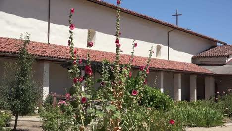 California-Mission-San-Antonio-De-Padua-Hollyhock-Side-Of-Church