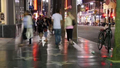 Los-Angeles-Hollywood-Walk-Of-Fame-People-With-Dog-At-Night