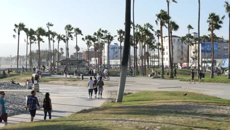 Los-Angeles-Venice-Beach-Boardwalk-Beyond-Bike-Park-Wide-View