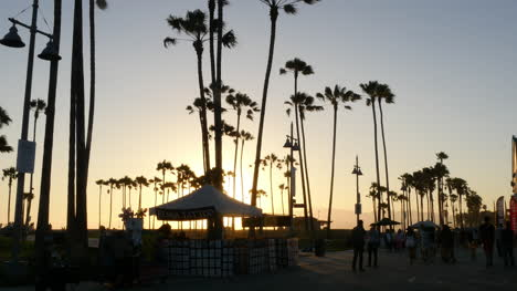 Los-Angeles-Venice-Beach-Boardwalk-Henna-Stand-W-Palms-Late-Afternoon-Backlit