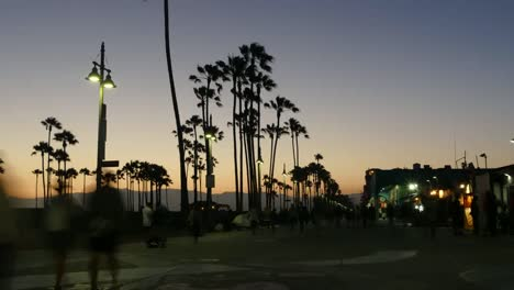Los-Angeles-Venice-Beach-Boardwalk-Open-Area-W-Lamps-Pedestrians-And-Palms-Time-Lapse