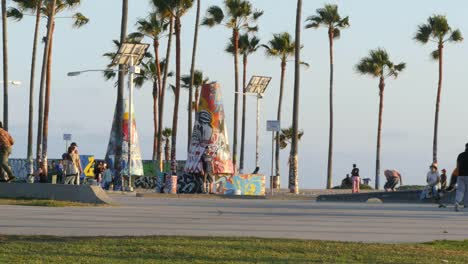 Los-Angeles-Venice-Beach-Skate-Park-Late-Afternoon-Sun-With-Palms-And-Graffiti