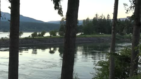 Oregon-Columbia-River-And-Trees-Evening-Pan-And-Zoom