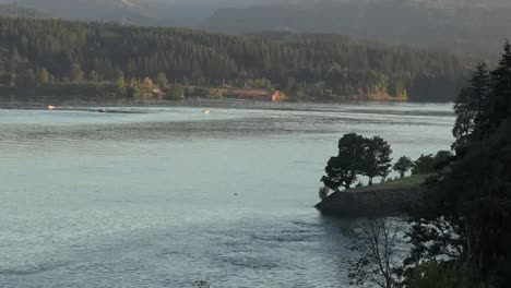 Oregon-Trees-And-Columbia-River-Zooms-Out