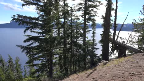 Oregon-Crater-Lake-Beyond-Trees