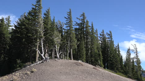 Oregon-Crater-Lake-Hill-With-Trees-Zoom