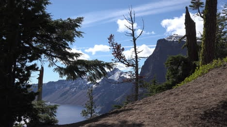 Oregon-Crater-Lake-View-With-Dead-Tree