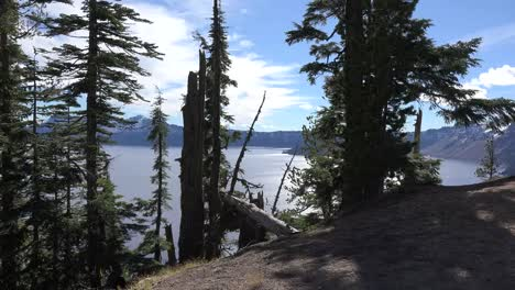 Oregon-Crater-Lake-View-With-Trees