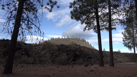 Oregon-Lava-Butte-Beyond-Pine-Trees
