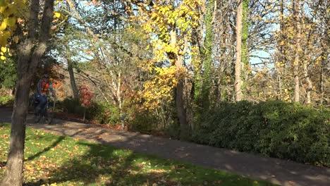 Oregon-Bicycles-On-A-Bike-Path-In-Fall