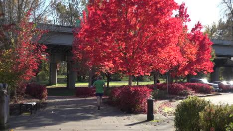 Oregon-Man-Jogging-On-Path